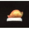 Single feve from Trésors nacrés III n°2 / 0.8p40f8